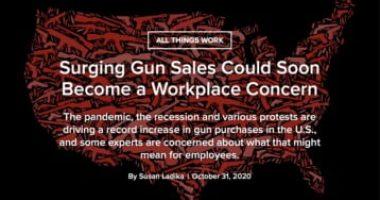 1019502_Surging Gun Sales