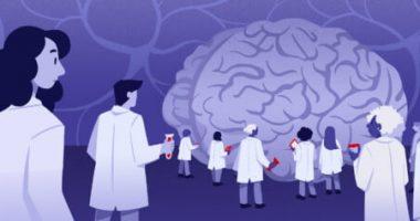 1031148_Brain Drugs image