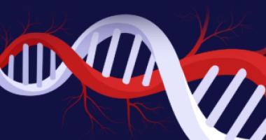 1032475_biopharma image